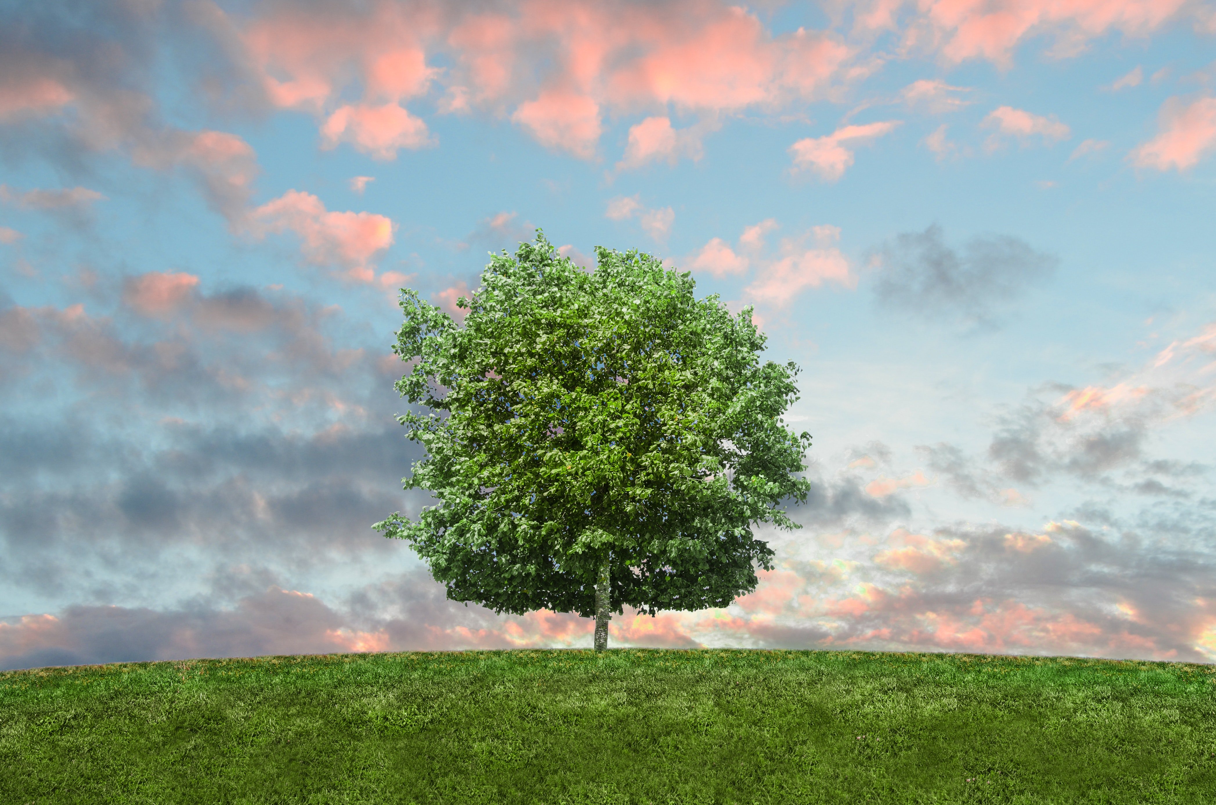 clouds-eco-environment-9198